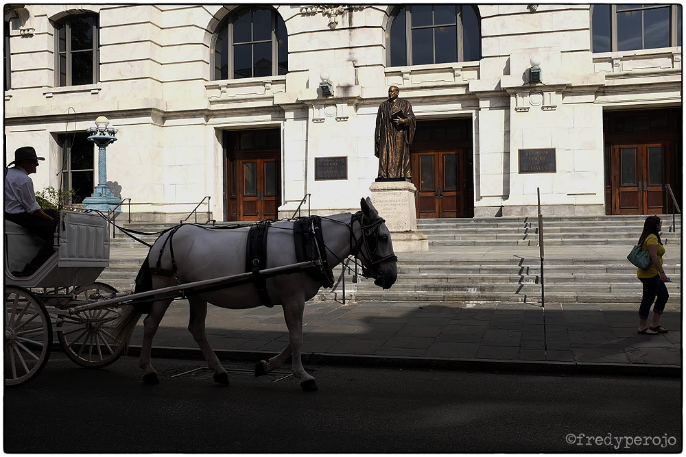 160612_horse_carriage_nola_fp_1000