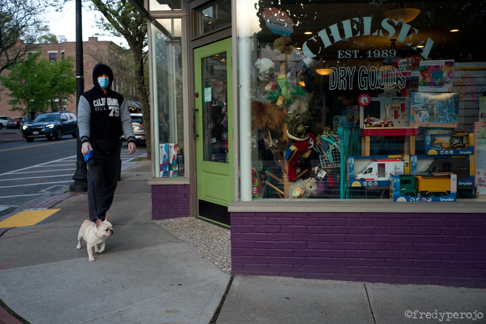 2020_coronavirus_dog_walking1_hastings_on_hudson_ny_perojo