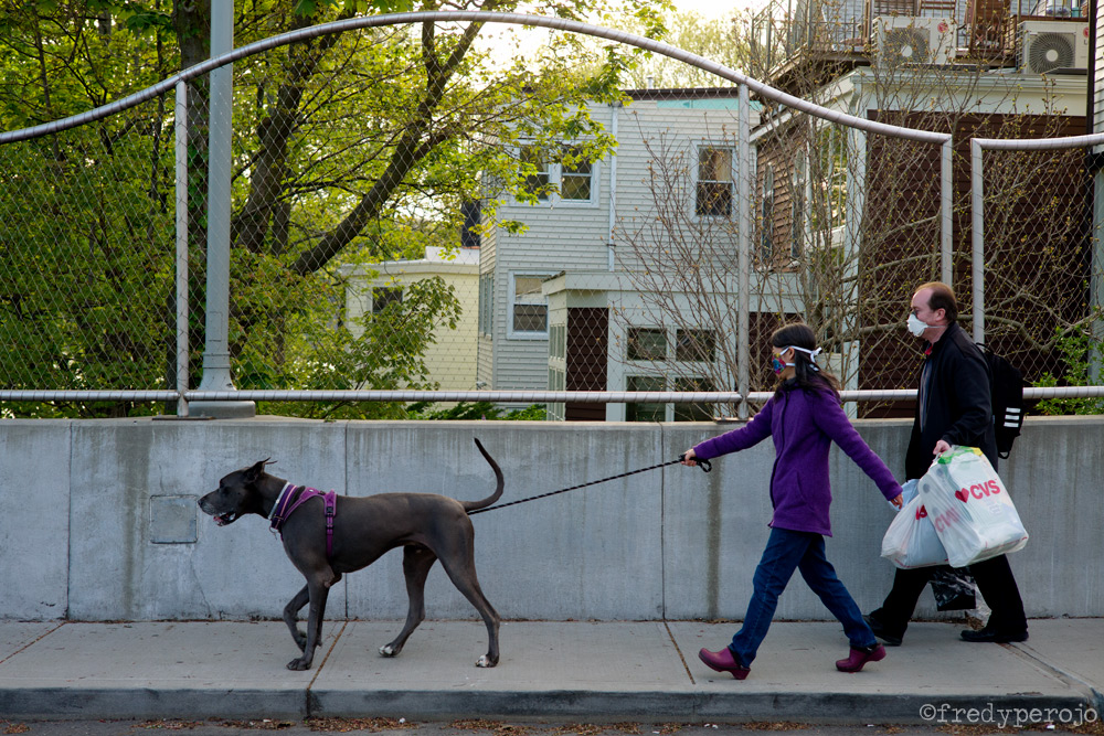 2020_coronavirus_dog_walking_hastings_on_hudson_ny_perojo
